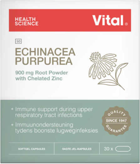 Picture of VITAL ECHINACEA PURPUREA CAPSULES - 30'S